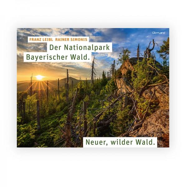 Der Nationalpark Bayerischer Wald - Neuer, wilder Wald